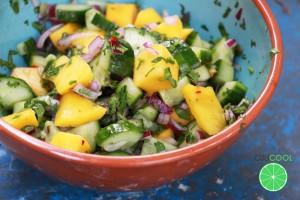 Mambo-Mango-Salade-logo