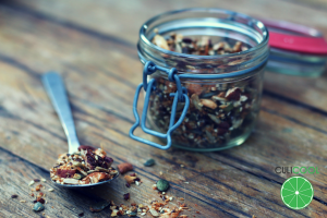 gezonde-granola-wordpress-afbeelding-2015-logo