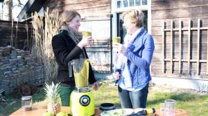 Keukengerei Blender Brenda en Nicole